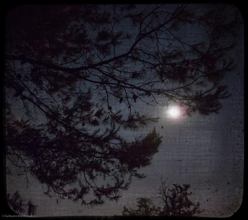 Moonlight sonata, 18 août 2013