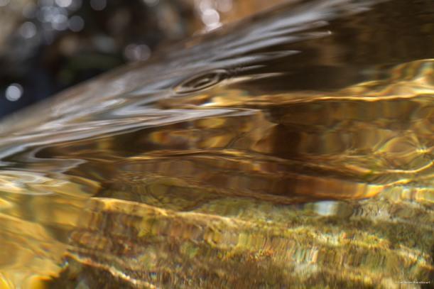 Variation sur l'eau, 6 août 2013