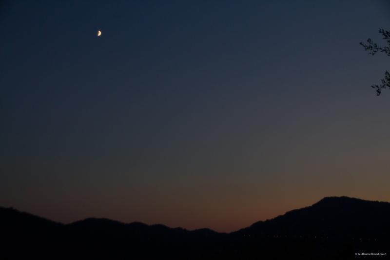 Moonlight sonata, 13 août 2013