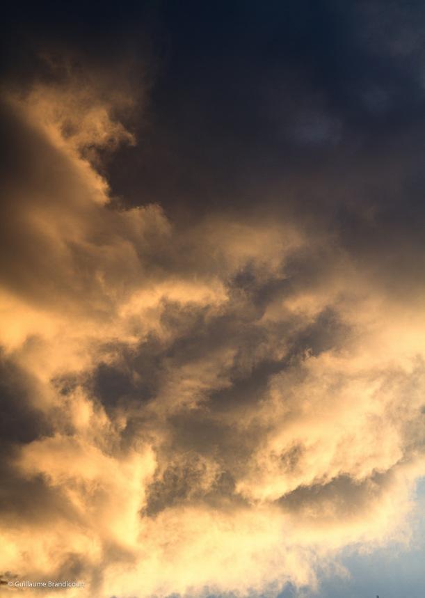 Sunset, août 2013