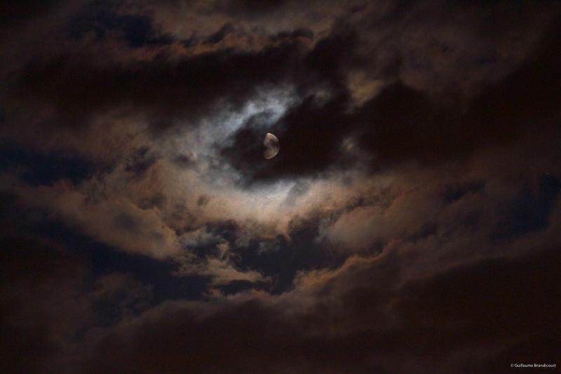 Moonlight sonata, 15 août 2013