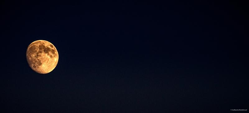 Moonlight Sonata (EDIT), 18 août 2013