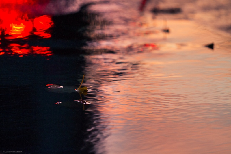 La feuille aux reflets du couchant, feu rouge (Leaf and sunset's reflection, red traffic light) 8 novembre 2013