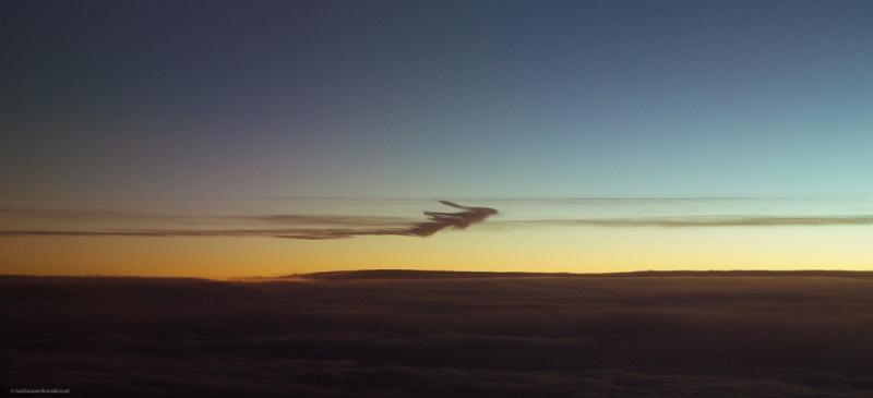 Fly me, VII 1er janvier 2014