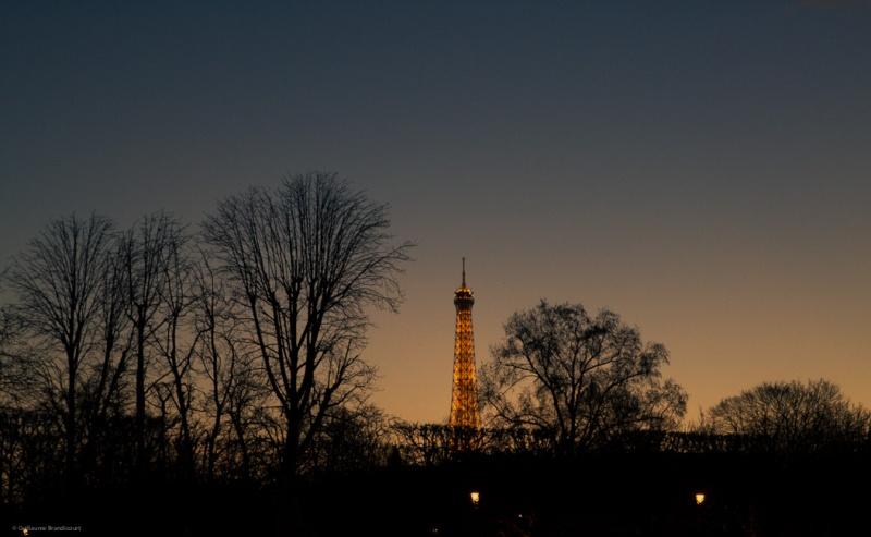 Tour Eiffel 3 janvier 2014
