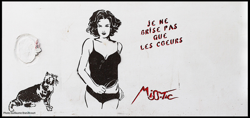 Paris, juin 2013 Graph : Miss-Tic Photo GB
