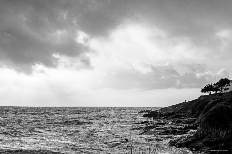 Le promeneur de Saint Gildas de Rhuys - variation Morbihan février 2014