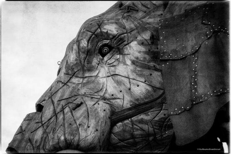 Le Grand Éléphant de Nantes Février 2014