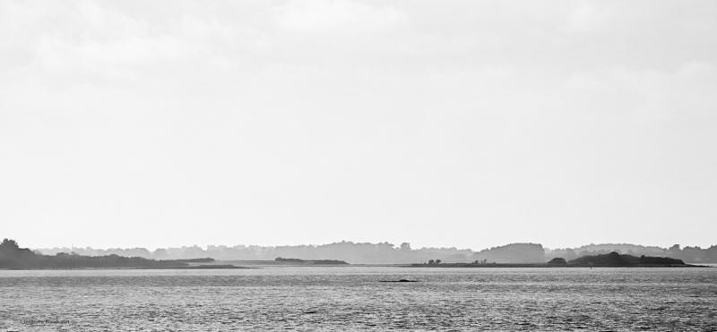 Quiétude Golfe du Morbihan février 2014