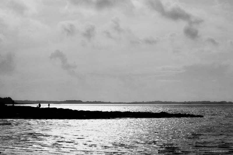 Contemplation Golfe du Morbihan - Montsarrac Février 2014