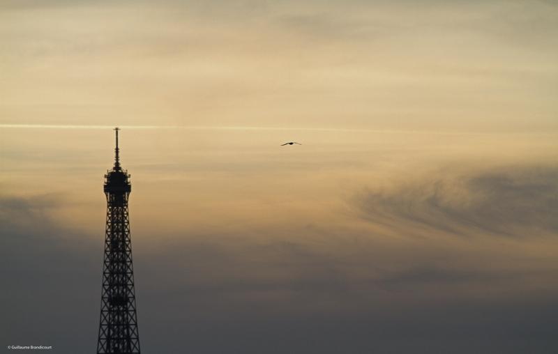 Paris, Tour Eiffel Coucher Février 2014