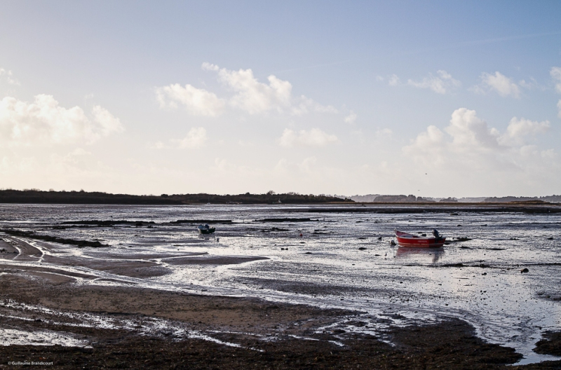 Calme plat - Low tide Ile de Boed / Canivarch Golfe du Morbihan Février 2014