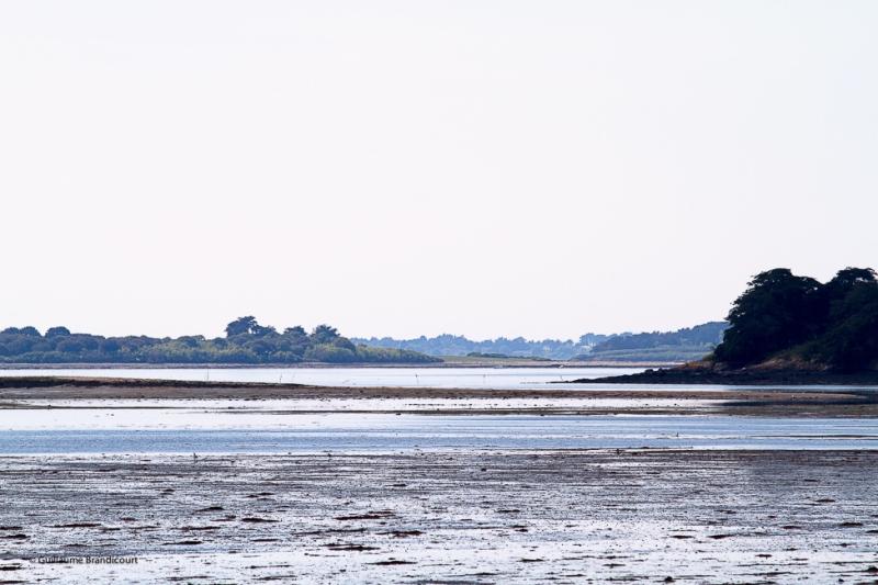 A l'étale - Tascon Golfe du Morbihan Mai 2014