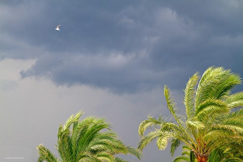 Avant l'orage Août 2015 (c) GB